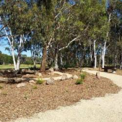 ABC RN: Growing number of families choosing natural burial option at Gungahlin Cemetery