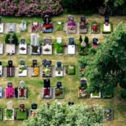 European Catholic bishops concerned about the rise of 'nature burials'
