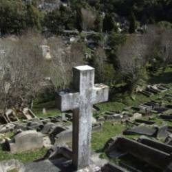 PlotBox engaged by Wellington City Council to Transform Cemetery Operations