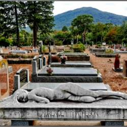 Macedon Cemetery Transforms Its Documentation with Software