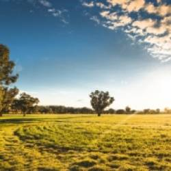 The  NSW Crown Land Manager (CLM) Governance Development Program