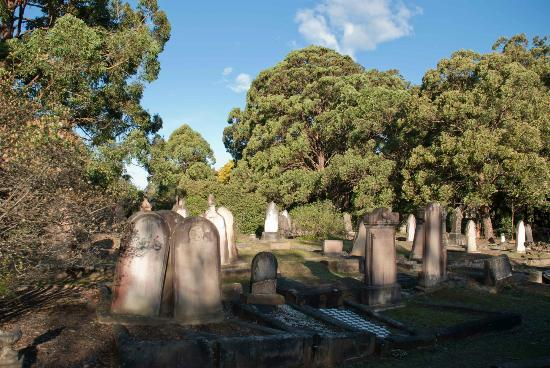 rookwood cemetery and